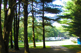 Partridge Hollow Camping Area